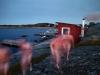 Bastubad i Frillesås 040907.Bild: Bo Håkansson, Bilduppdraget